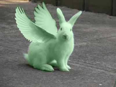 I can see Flying Mint Bunny