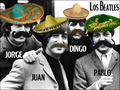 Los Beatles - im-a-loser photo
