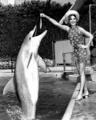 Natalie's feeding the fish to dolphin  - natalie-wood photo