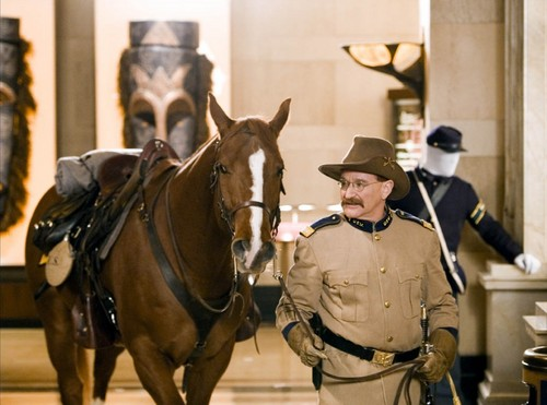 robin williams wallpaper with a horse trail, a horse wrangler, and a lippizan entitled Night At The Museum