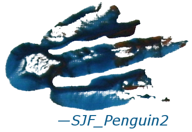 pinguim Footprint Signature