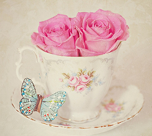 Rose Cup for my Fairy Sister