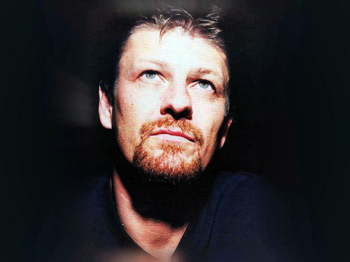 Sean Bean wallpaper containing a portrait entitled Sean Bean