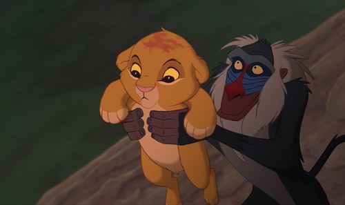 Simba - the-lion-king Photo
