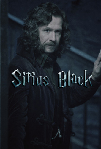 Sirius Black - snapes-family-and-friends Photo