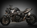 Vilner Custom Bike BMW F800 R -