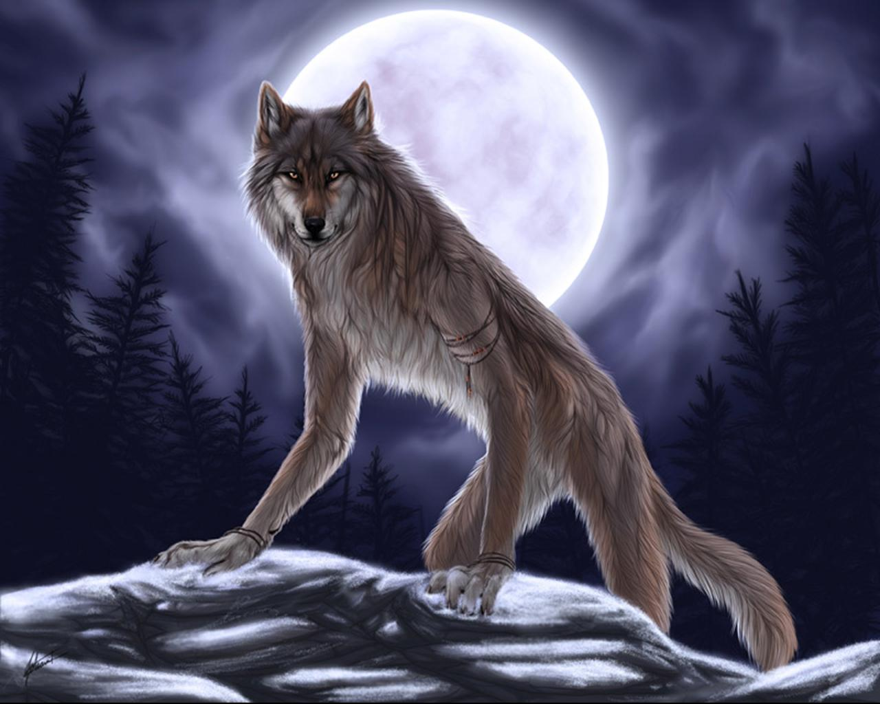 Werewolf - Fantasy Photo (31034491) - Fanpop fanclubs