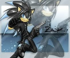 ZACK THE HEDGEHOG (not Zak)