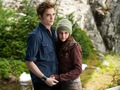 bella and Edward - edward-and-bella wallpaper