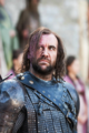 Sandor Clegane - game-of-thrones photo