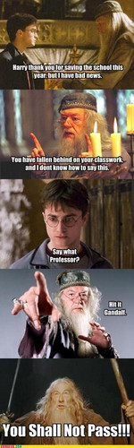 harry's school