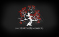The North Remembers - a-song-of-ice-and-fire wallpaper