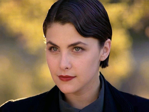 Sherilyn Fenn wallpaper containing a business suit called sherilyn