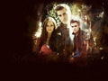 stelenatvd.org Wallpaper - stefan-and-elena wallpaper