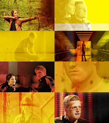 → The Hunger Games - the-hunger-games Fan Art
