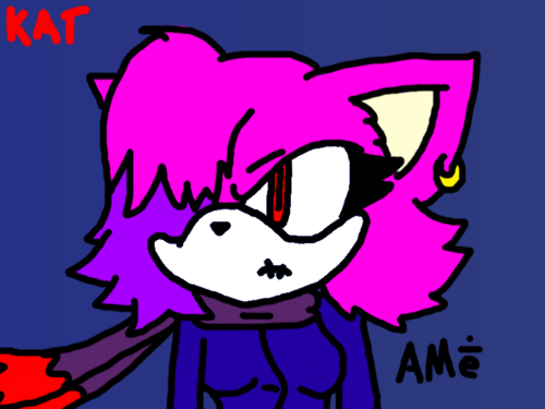 AMe the Cat