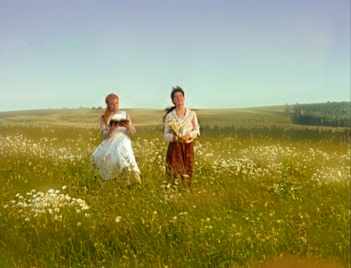 Anne of Green Gables wallpaper probably with a bridesmaid and a grainfield titled Anne&Diana