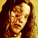 BVH in House of Wax - brian-van-holt icon