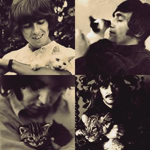 Beatles With Cats