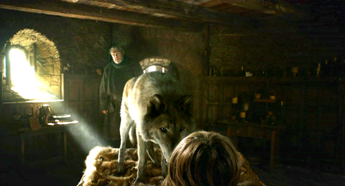 Bran with Hodor and Summer