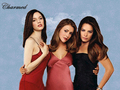 charmed - Charmed Posterized wallpaper