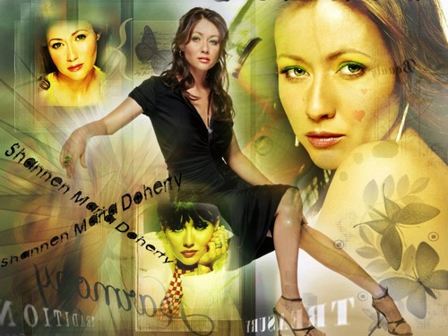 Charmed fond d'écran containing a bouquet, a sign, and a portrait entitled Charmed - Shannen Doherty