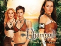 Charmed Valkyrie Vixens - charmed wallpaper