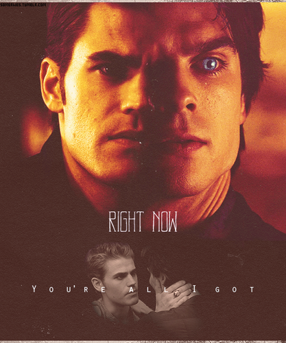 Defan - damon-and-stefan-salvatore Fan Art