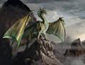 Dragon - dragons photo