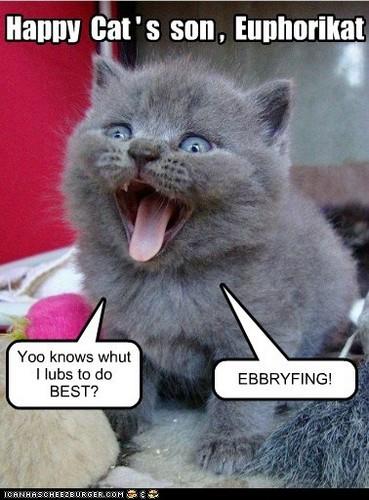 Ebbryfing!