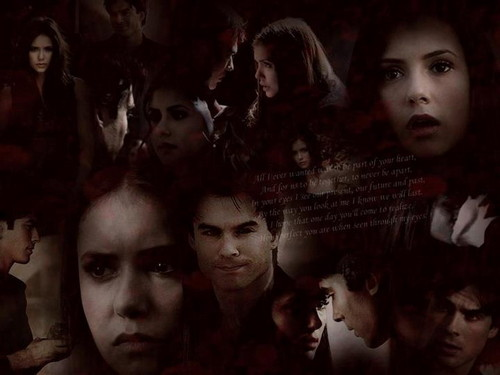 The Vampire Diaries kertas dinding possibly with Anime entitled Elena & Damon