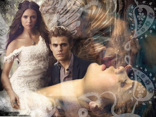 The Vampire Diaries پیپر وال possibly containing an abattoir entitled Elena & Stefan