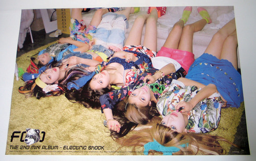 F(x) @ Electric Shock Individual Poster