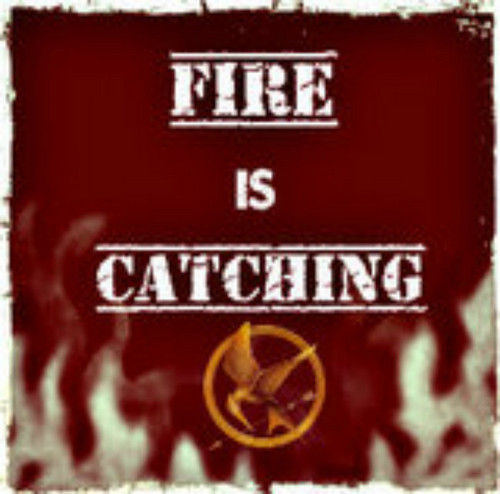 Fire is Catching - the-hunger-games Fan Art