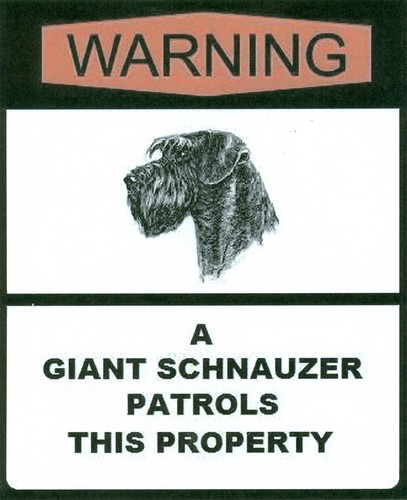 Giant Schnauzer wallpaper possibly with anime titled Giant Sign