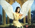 Guardian Angel for rosebud - yorkshire_rose photo