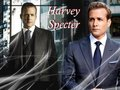 suits - Harvey Specter wallpaper