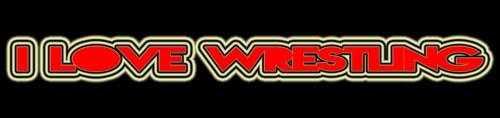 I 愛 Wrestling!