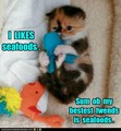 I likeds seafoods. - lol-cats photo