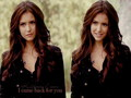 katherine-pierce - Katherine Pierce  wallpaper