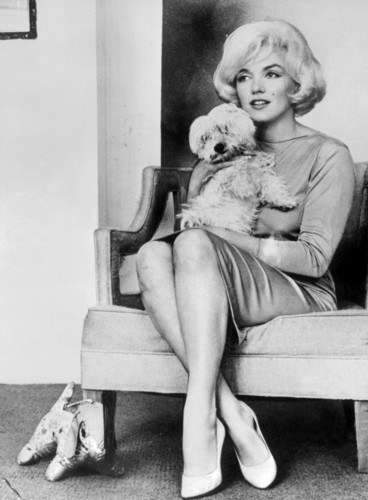 Marilyn Monroe wolpeyper with a park bench entitled Marilyn Monroe