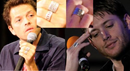 Misha & Jensen Similarities