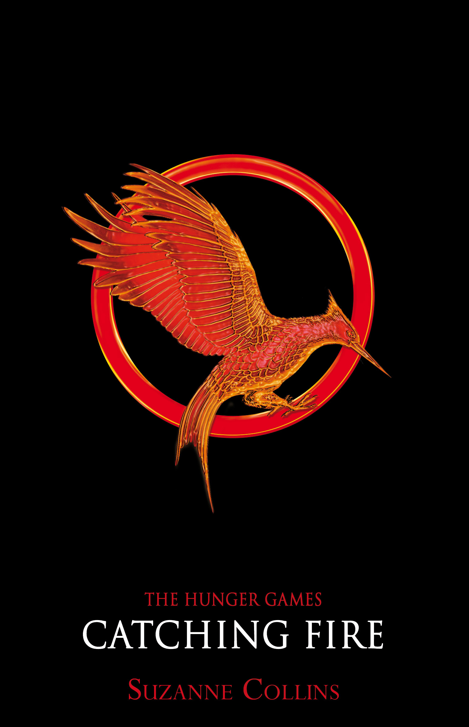 Catching Fire Tributes Posters Tribute Arena Catching Fire
