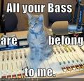 Music master - lol-cats photo