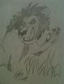 Nuka - lionkingt photo