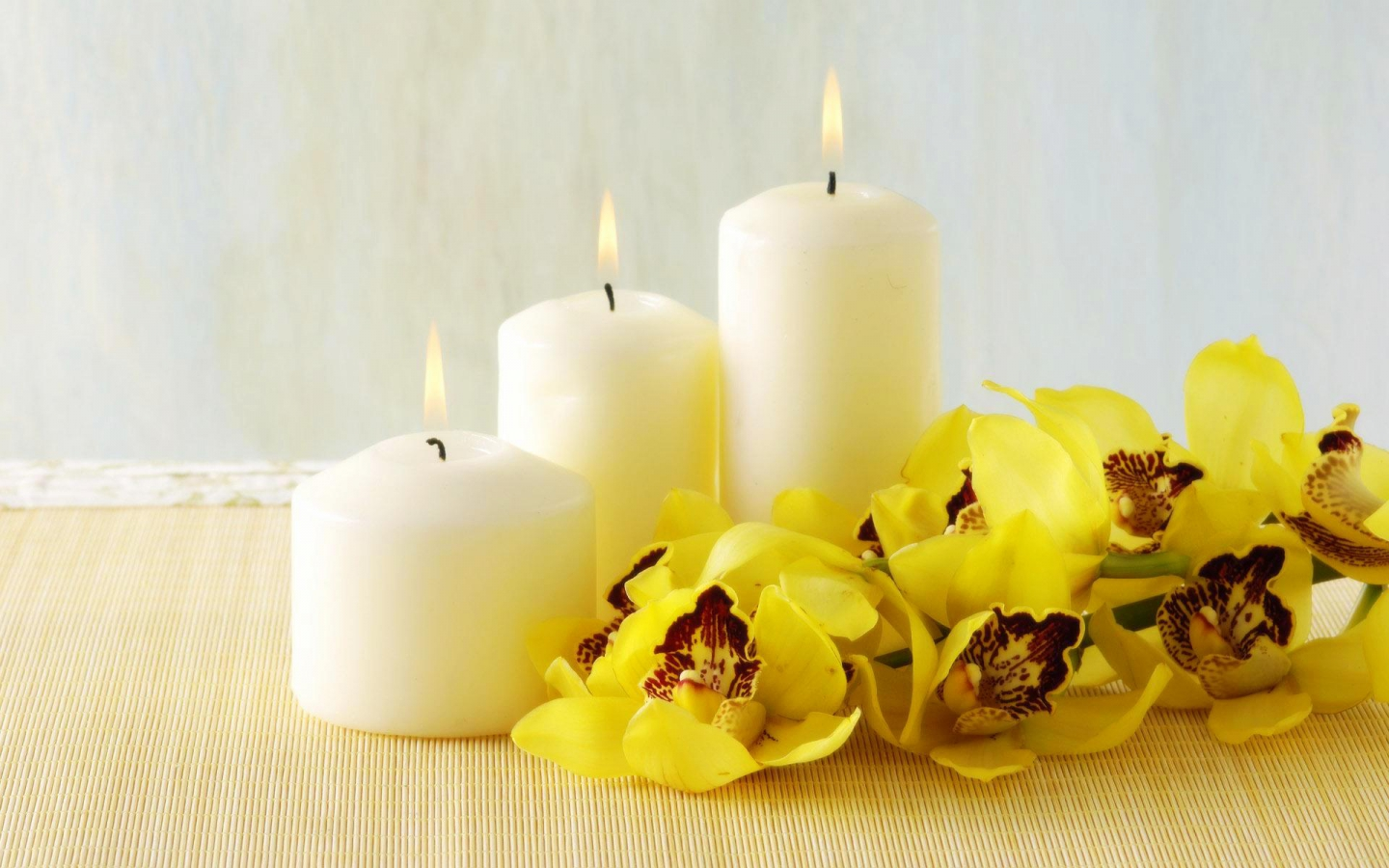 Flowers images Orchid And Candles HD wallpaper and background photos