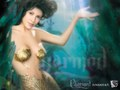 Phoebe Under the Sea - charmed wallpaper
