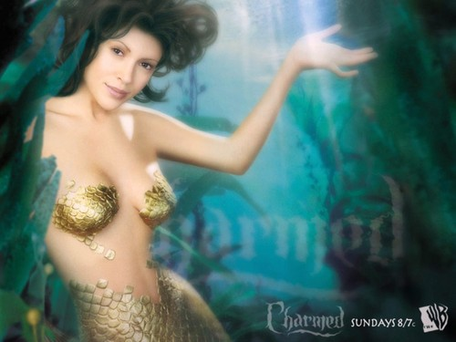 Charmed پیپر وال with a bikini titled Phoebe Under the Sea
