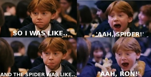 Ron and Spiders. :D