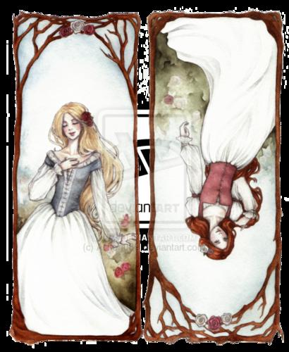 Snow White & Red Rose